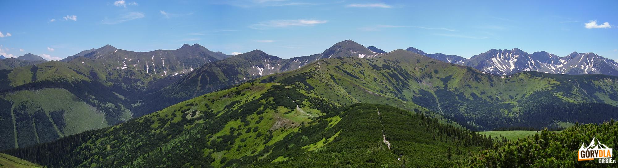 Panorama ze szczytu Grzesia (1653 m): główna grań Tatr Zachodnich, od Przełęczy Tomanowej przez Błyszcz (2159 m), Starorobociański Wierch (2176 m), Jarząbczy Wierch (2137 m), Wołowiec (2064 m) i grań Rohaczy po Banówkę (2178 m) i Salatyn (2048 m)
