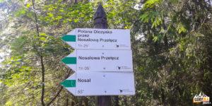 Drogowskazy zielonego szlaku przy kasie TPN koło Tamy Pod Nosalem