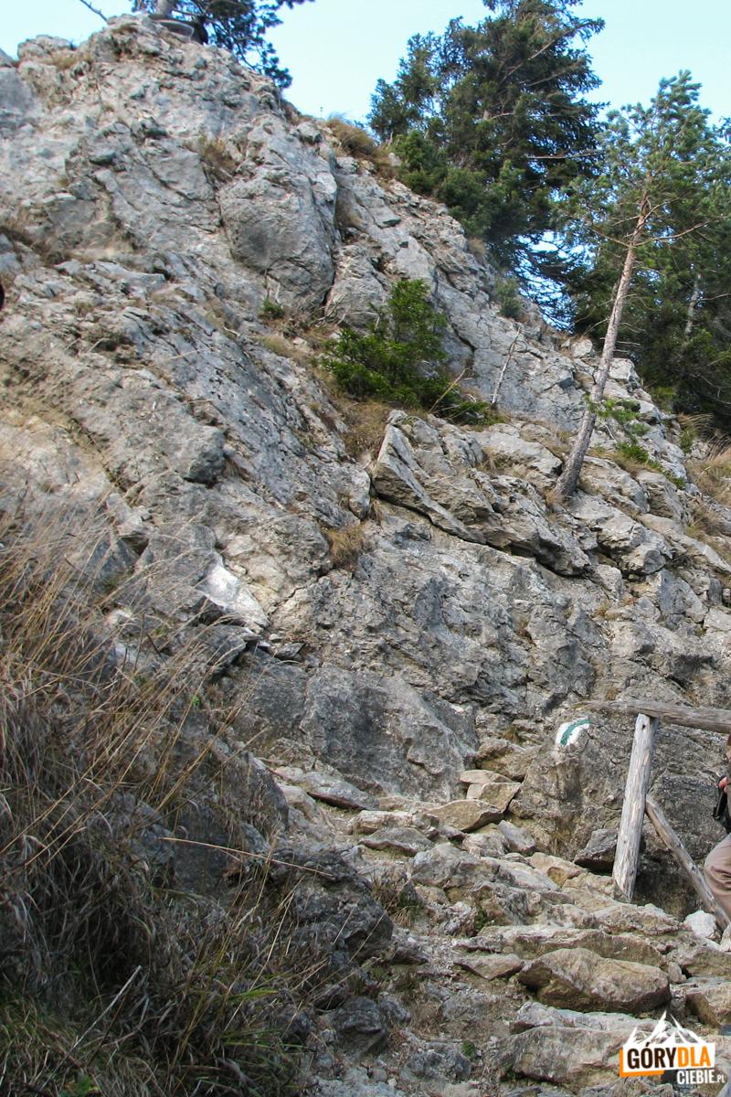 Skalny fragment szlaku pod szczytem Nosala (1206 m)
