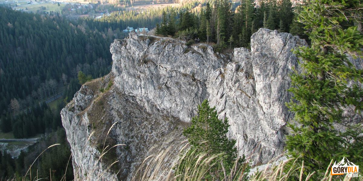 Ściany Nosala opadające w stronę drogi do Kuźnic
