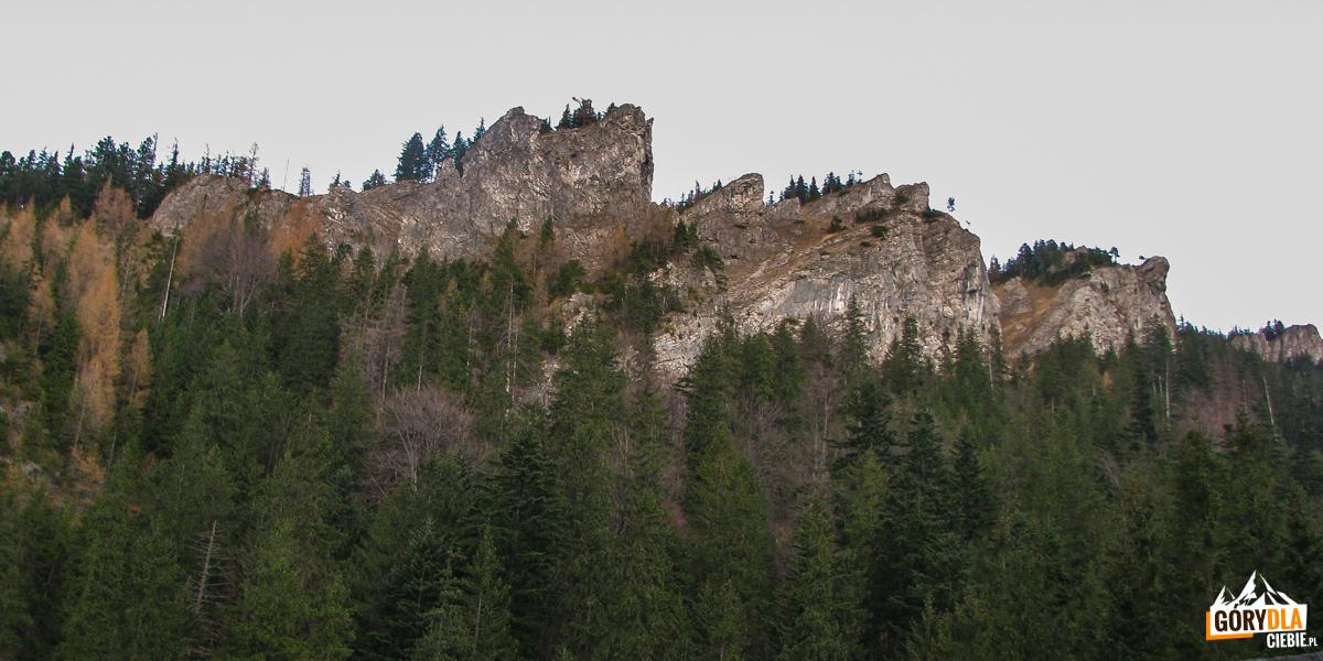 """Skalne """"nosy"""" Nosala (1206 m) widziane spod Tamy Pod Nosalem"""