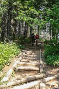 Ścieźka z Nosala (1206 m) na Nosalową Przełęcz (1103 m)