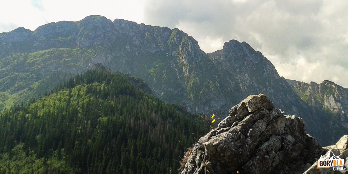 Widok zSarniej Skały (1377 m) naGiewont (1895 m)