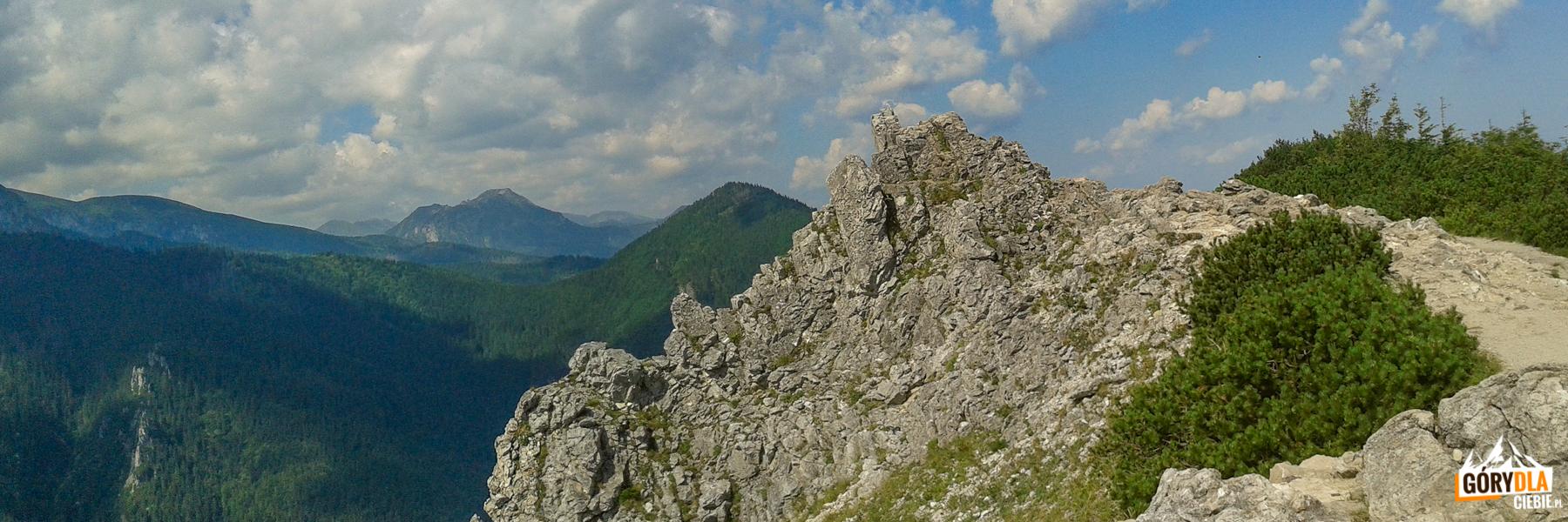 Widok zSarniej Skały (1377 m) naKominiarski Wierch (1829 m