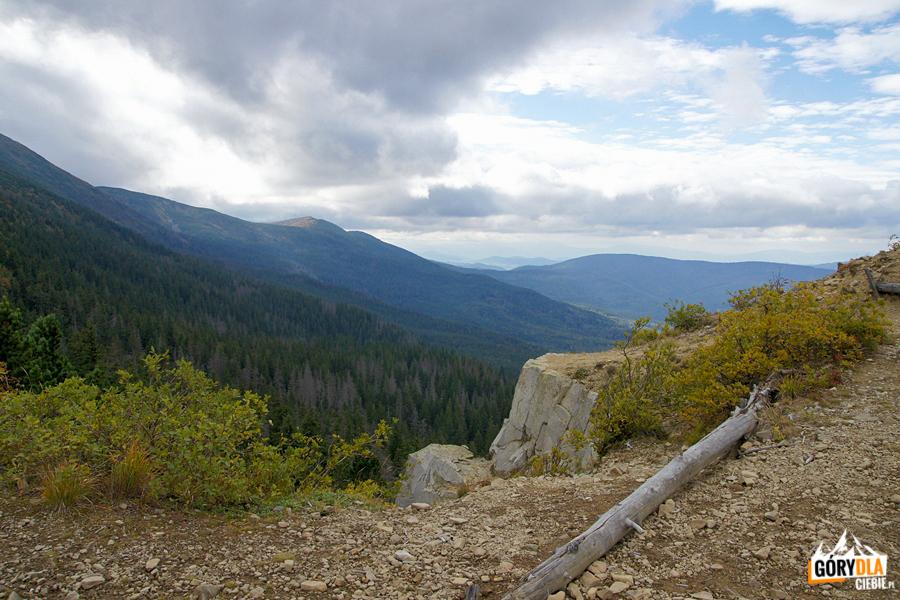 Na trasie czerwonego szlaku zejście zBabiej Góry naPrzełęcz Krowiarki