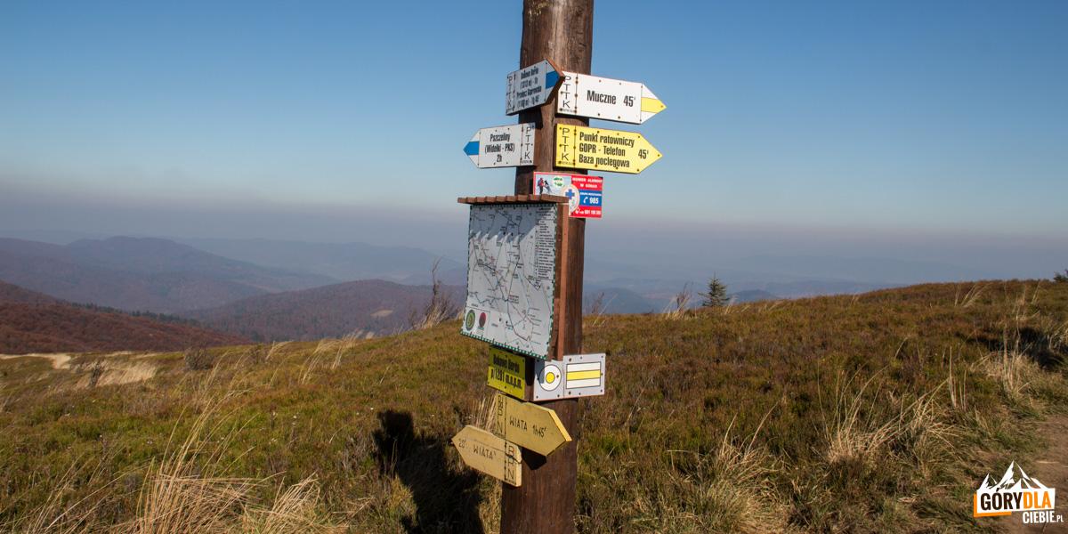 Bukowe Berdo (1201 m)- tutaj zółty szlak spotyka sie zeszlakiem niebieskim biegnącym naBukowe Berdo zPszczelin – Widełek