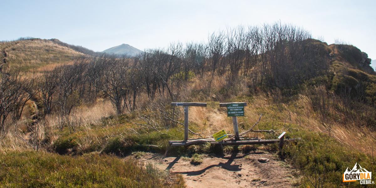 Tablice informujące o zmianie przebiegu szlaku – z racji na ochronę zniszczonego terenu szlak przechodzi na północną stronę grzbietu