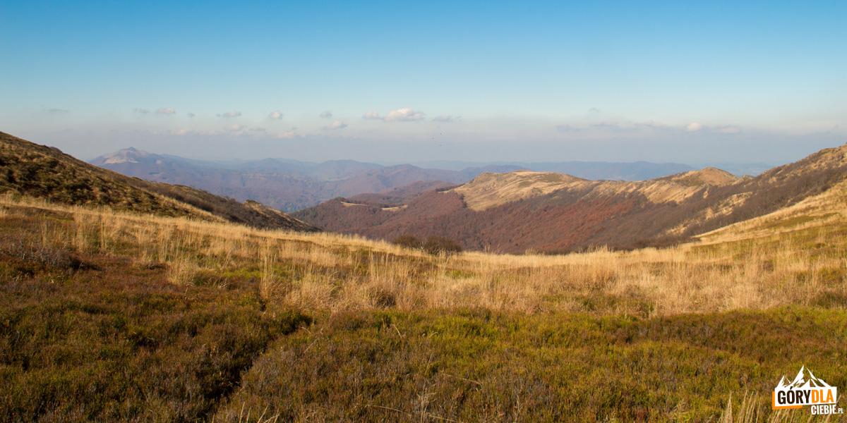 Panorama Bukowego Berda z Przełeczy Goprowskiej