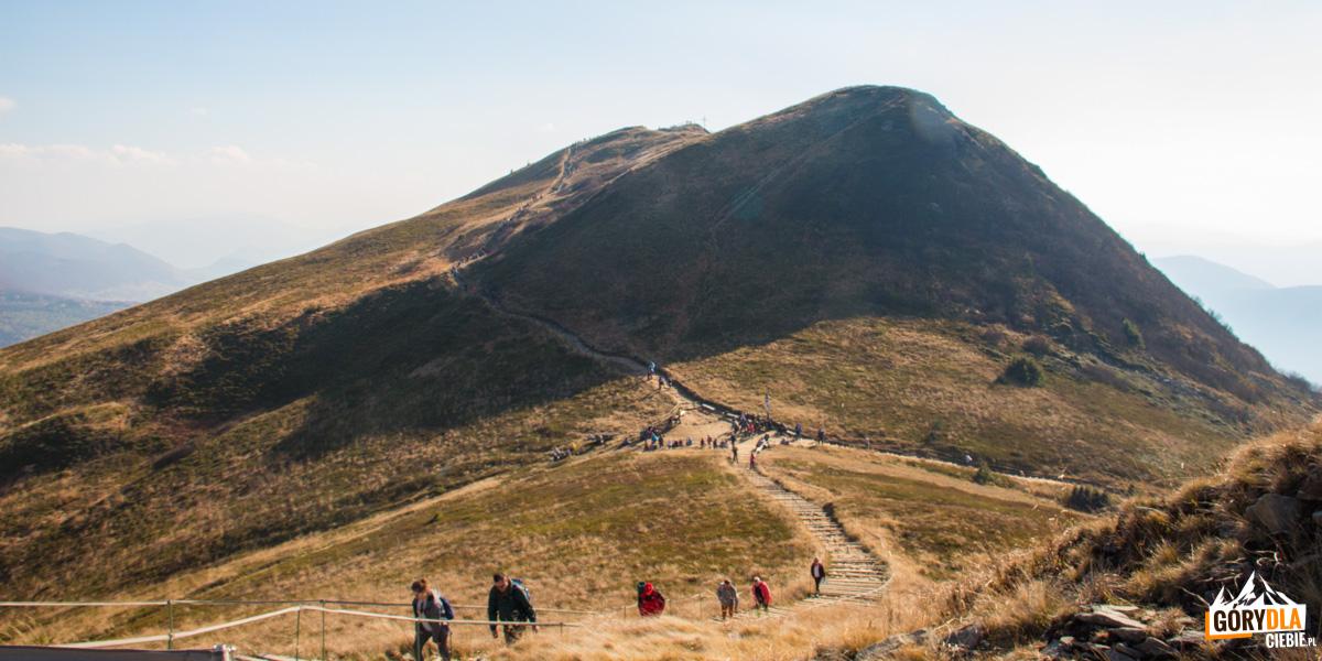 Skrzyżowanie szlaków na Przełęczy pod Tarnicą