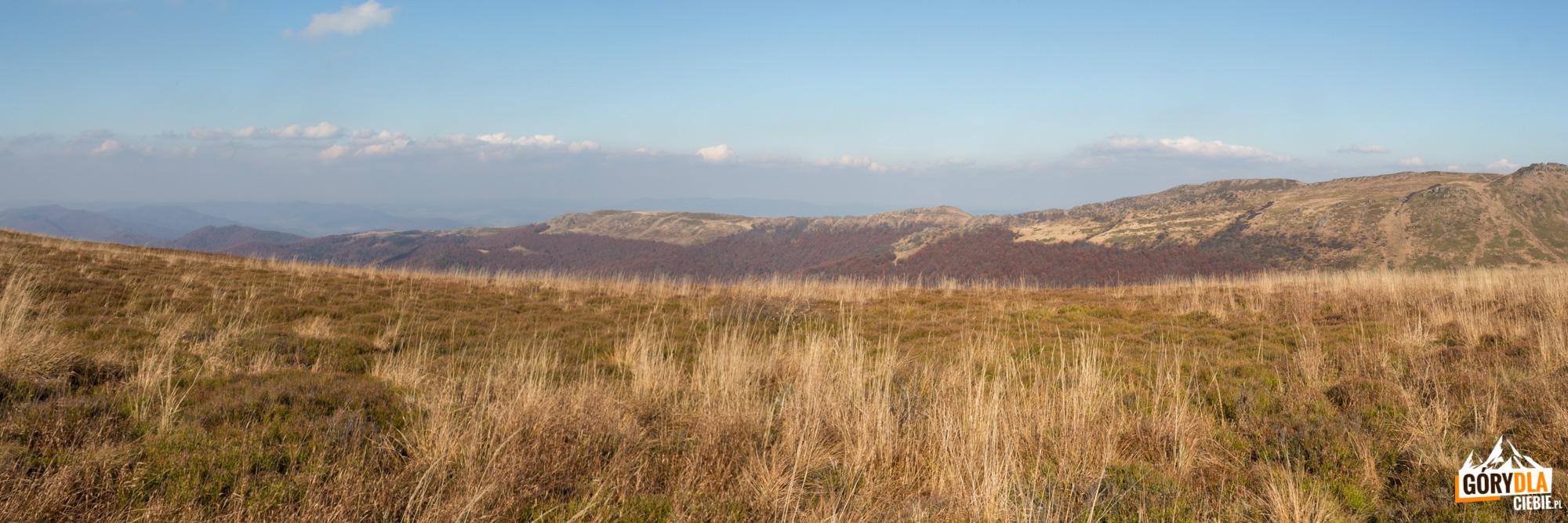 Panorama z grani Szerokiego Wierchu na Bukowe Berdo