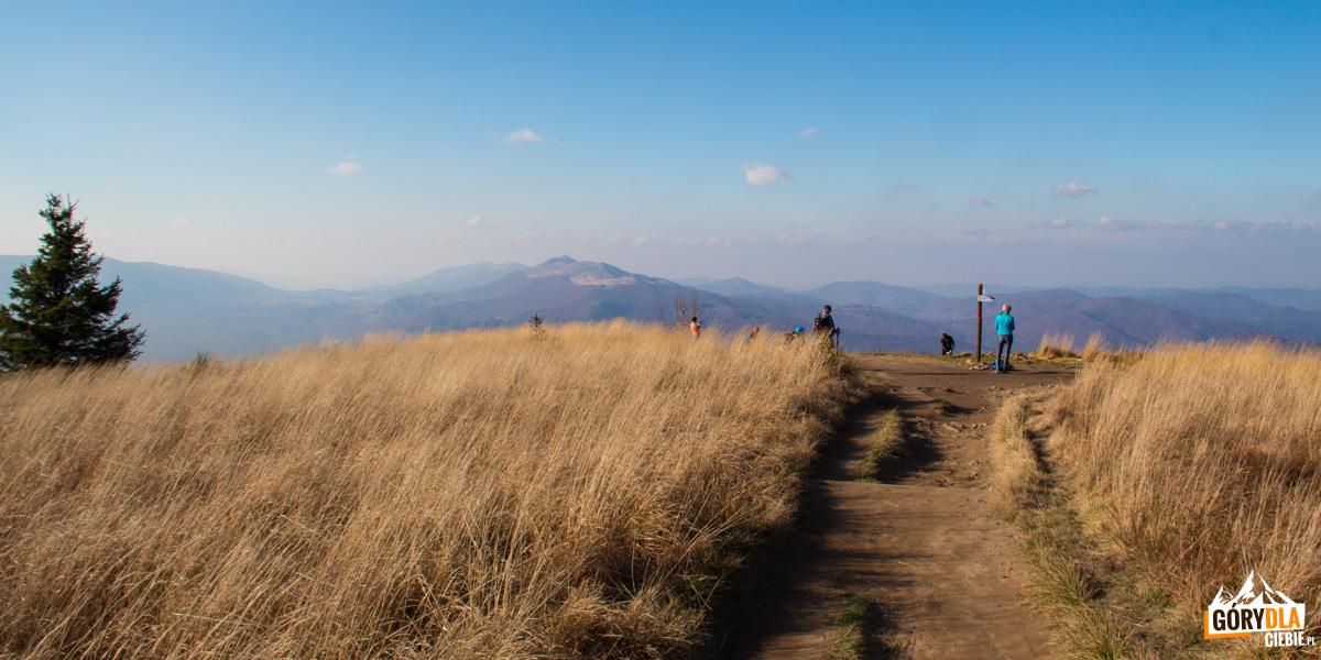 Panorama z Szerokiego Wierchu na Połoninę Caryńską i