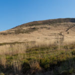 Ścieżka na Szeroki Wierch z Ustrzyk Górnych