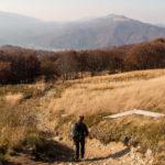 Zejście z Szerokiego Wierchu do Ustrzyk Górnych