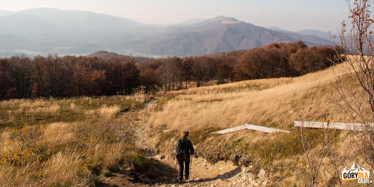 Zejście zSzerokiego Wierchu doUstrzyk Górnych