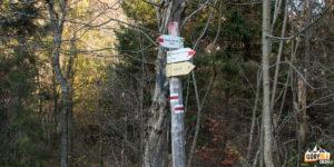 Czerwony szlak Ustrzyki Górne - Szeroki Wierch