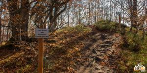 Drogowskazy do grobów żołnierzy z okresu I wojny światowej