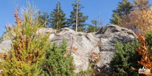 Wychodnia skalna na szczycie Dwernika Kamienia