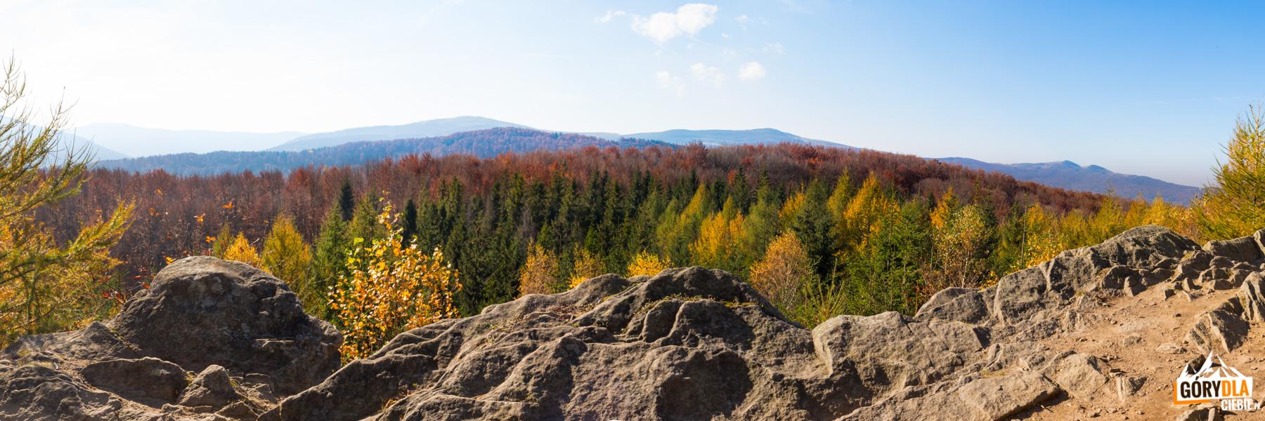 Dwernik Kamień - panorama zeszczytu