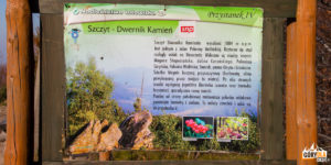 Tablica informacyjna na szczycie Dwernika Kamienia (1004 m)