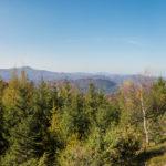 Panorama ze szczytu Dwernika Kamienia
