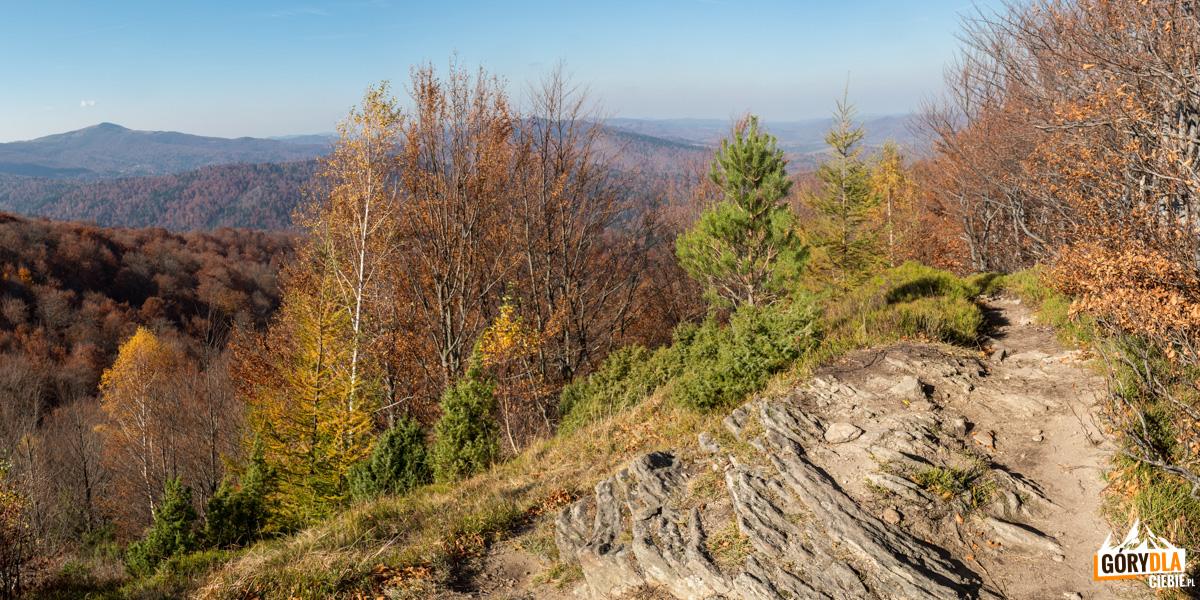 Panorama zeszczytu Dwernika Kamienia