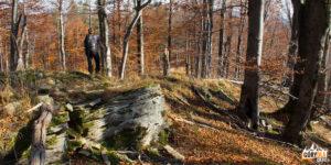 Wychodnia skalna przy szlaku z Dwernika Kamienia do Nasicznego