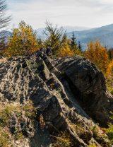 Dwernik Kamień
