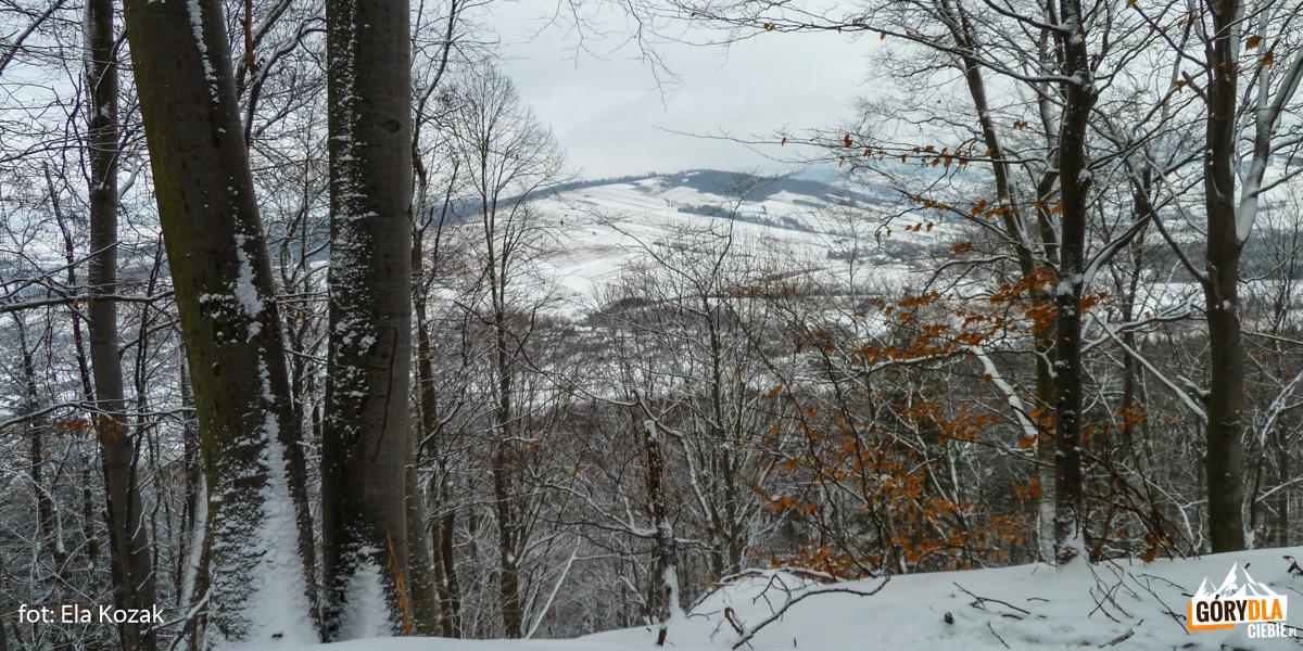 Góra Zamkowa nadMrukową, zdj. Ela Kozak
