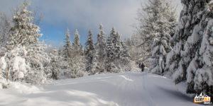 Trasa czarnego szlaku koło Bukowiny Obidowskiej
