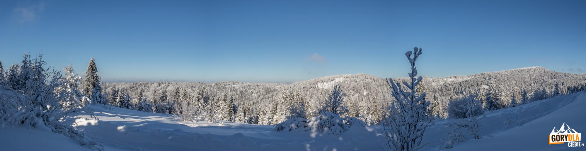 Zima wGorcach