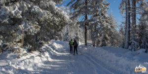 Pod Turbaczem na skiturach