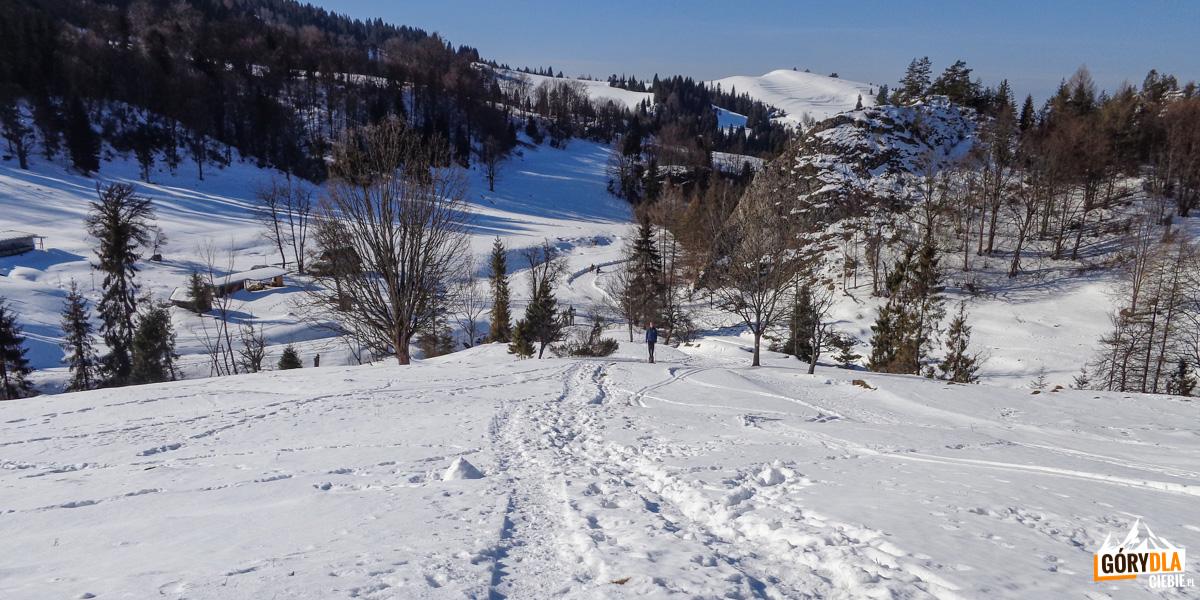 Widok naKociubylską Skałę zpodejścia naPrzełęcz Rozdziela