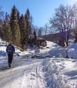 Pieniny - Dolina Białej Wody zimą