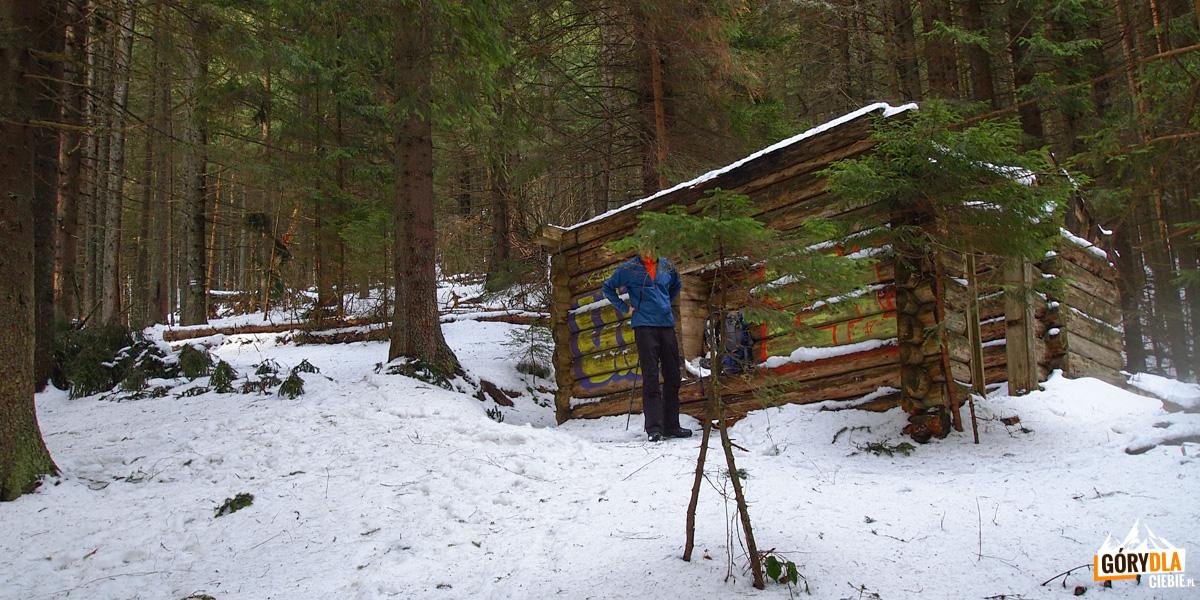 Trasa na Kukuł, resztki szałasu w lesie