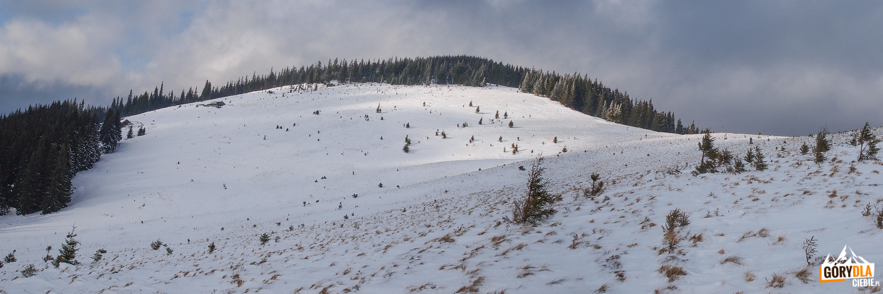 Panoramy zeszczytu Kukuła (1534 m)