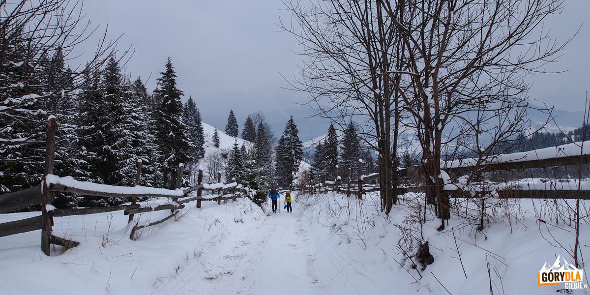 Spacer do pięknej huculskiej wsi - Chodak Wełyki