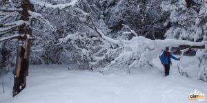 Wędrówka w głębokim śniegu w stronę Kostrzycy
