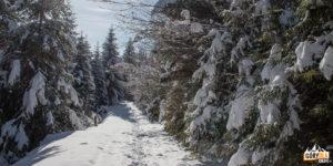 Droga w stronę Rezerwatu Wysokie Skałki