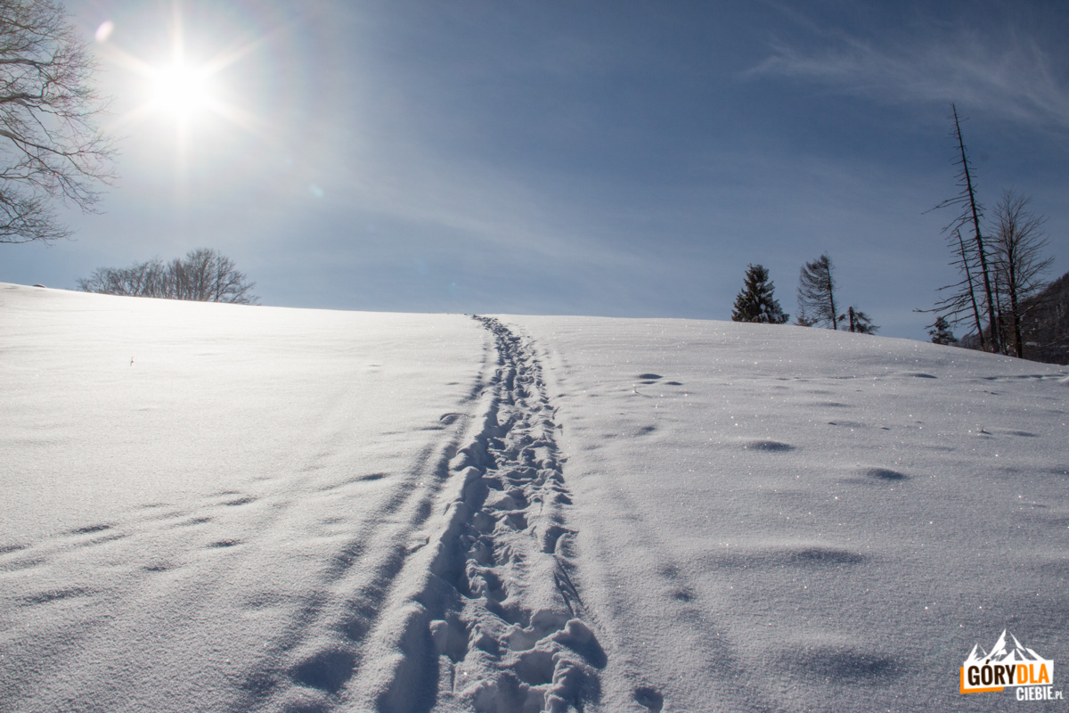 Podejście od strony stacji narciarskiej Jaworki na polanę pod Wysoką