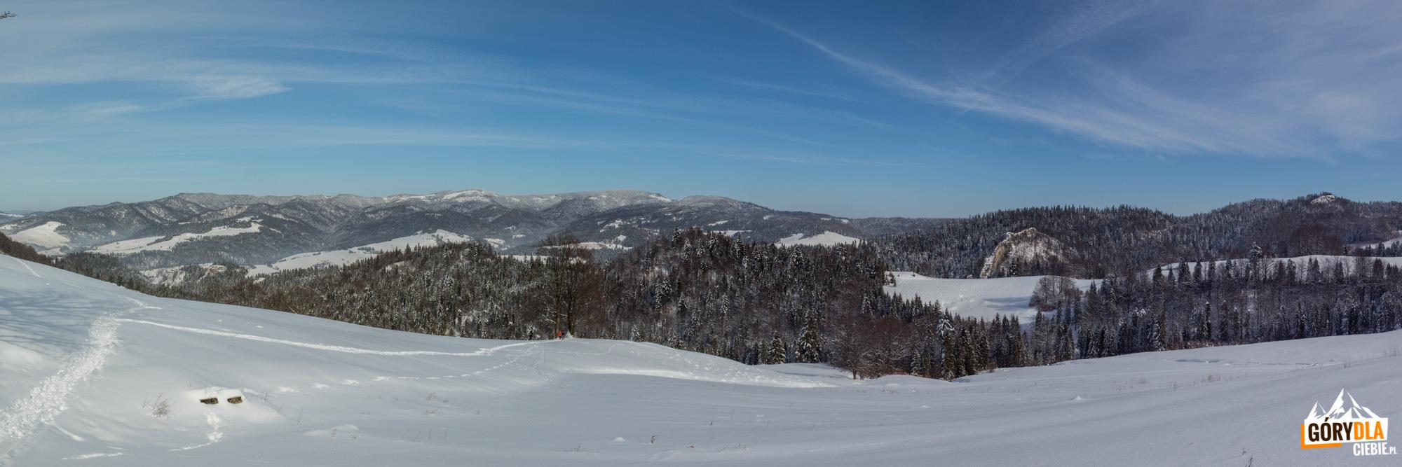 Panorama z drogi na Wysoką