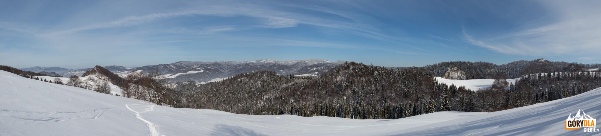 Panorama z zielonego szlaku na Wysoką