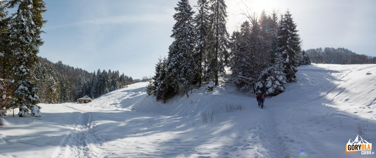 Polana Rówieńki w drodze na Wysoką