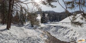 Zimowy potok Kamionka