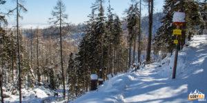 Trasa przy Wodospadach Zimnej Wody