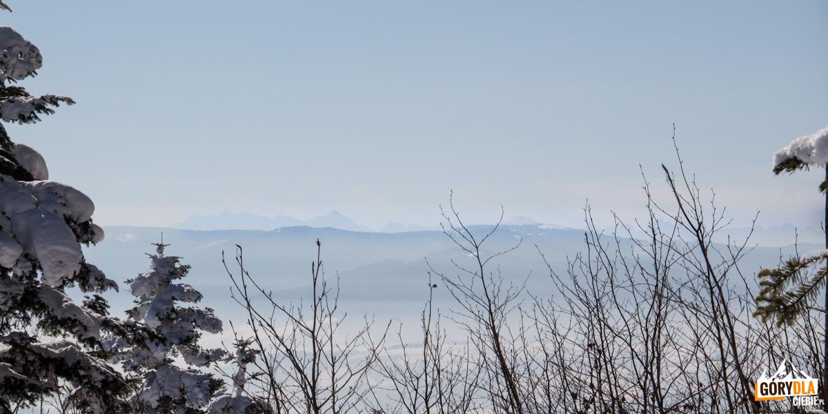 Panorama zpodejścia naLubogoszcz - widać nawet Tatry