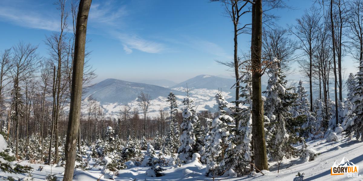 Panorama zLubogoszczy