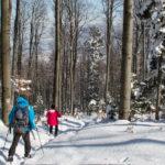 Bardzo strome zejście czerwonym szlakiem ze szczytu Lubogoszczy