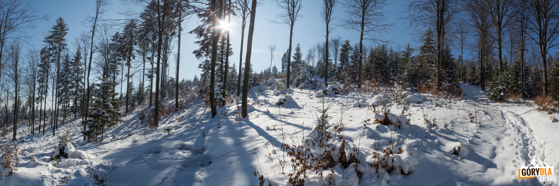 Zima naLubogoszczy