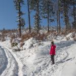 Na wprost - czerwony szlak wychodzi na szczyt Lubogoszczy, my skręcamy w lewo, w drogę, którą bez szlaku również dotrzemy na szczyt