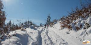 Droga bez szlaku, która dotrzemy na szczyt Lubogoszczy